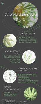 Cannabinoids 101 (1)